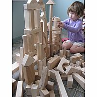 Special Shapes 120 piece Block Set